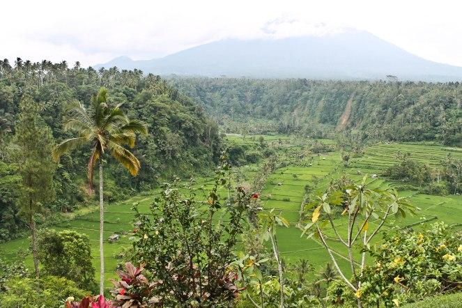 Bali - 15