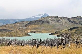 Patagonie - 25