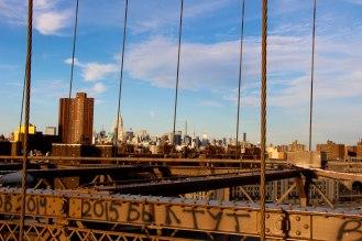 New York 29